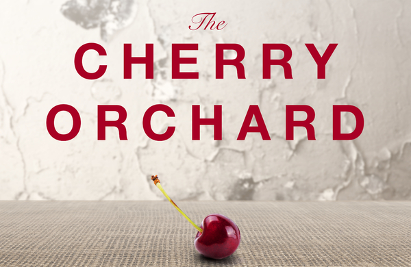 Bristol Old Vic to adapt The Cherry Orchard and Touching the Void in 2018