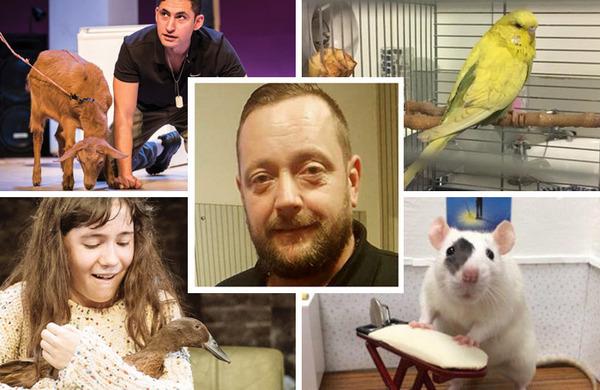 Animal magic: Meet Des Jordan, the man bringing performing pets to the British stage