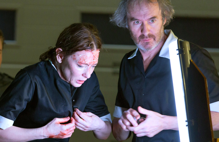 Cate Blanchett and Stephen Dillane in When We Have Sufficiently Tortured Each Other. Photo: Stephen Cummiskey