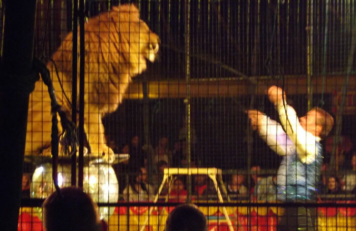 Britain's last remaining lion tamer Thomas Chipperfield performing in 2015