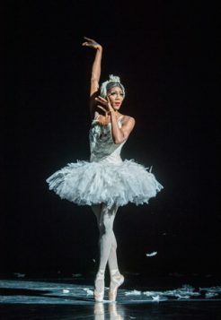 Les Ballets Trockadero De Monte Carlo-Peacock-633