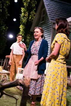 All My Sons-Old Vic-355 2