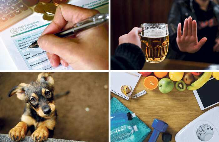 The panel's new year's resolutions include filing their tax return early, drinking less, losing weight and getting a dog. Photos: Shutterstock