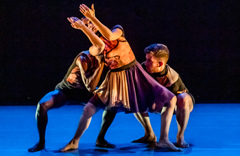 Dark times ahead for dance – the survivors may be the tough not the talented
