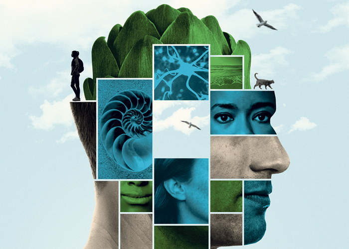 Promotional image for Donny's Brain