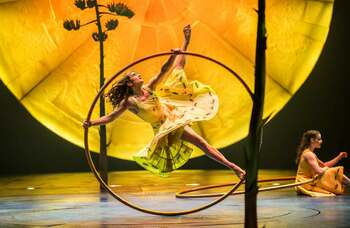 Coronavirus: Cirque du Soleil cuts 3,500 jobs to stave off bankruptcy