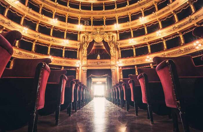 Theatres are full of fabrics that can be ruined by moths. Photo: Shutterstock