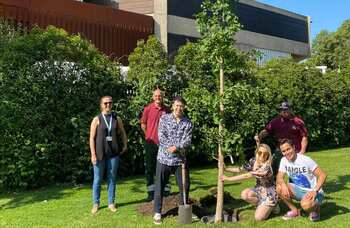 Chichester Festival Theatre plants trees to celebrate show openings